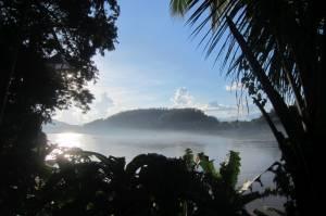 Mgła nad Mekongiem