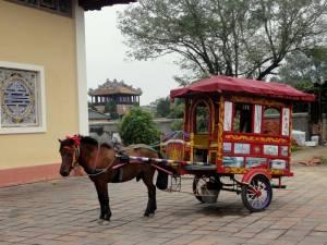 Po terenie Carskiej Cytadeli można jeździć taką uroczą bryczką :)