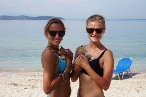 Plaża, morze i koty = pełnia szczęścia!
