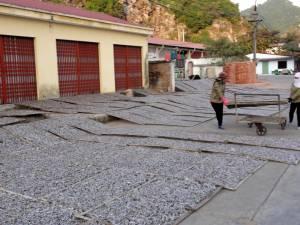 Suszone rybki na ulicach Cat Ba
