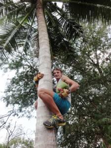 W ogrodzie rosły też palmy kokosowe, co oczywiście wykorzystaliśmy! :) Mniam!