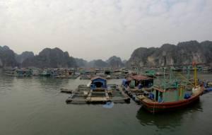 Pływająca wioska, w której mieszka ponad 800 osób!