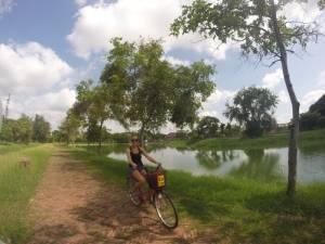 Na różowej strzale przez park w Ayutthaya