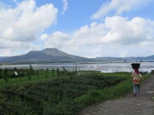 W kraterze wulkanu Batur