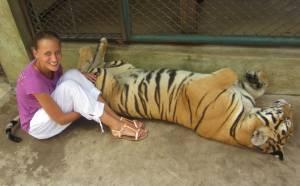 Tygrysy to wielkie śpiochy - potrafią drzemać nawet 18 godzin dziennie!