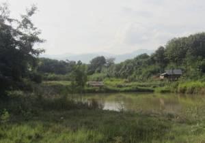 Laotański krajobraz