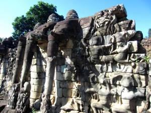 Elephant Tarrace