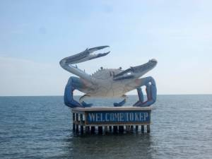 Kep słynie z hodowli krabów