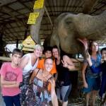 Międzynarodowa ekipa na wolontariacie w Pai wraz ze słonicą Pompem!