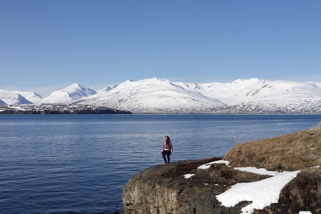 Workaway na Islandii