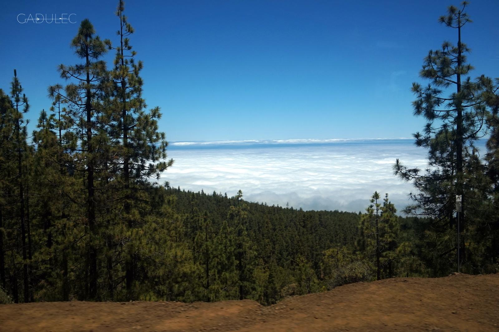 Widoki w drodze z Parku Narodowego Teide do Icod de los Vinos