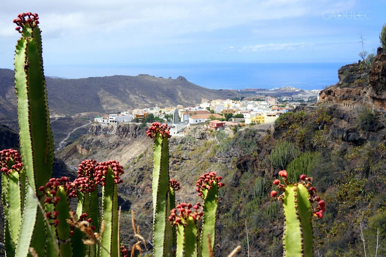 Widok na Adeje w czasie trekkingu (Barranco del Infierno)