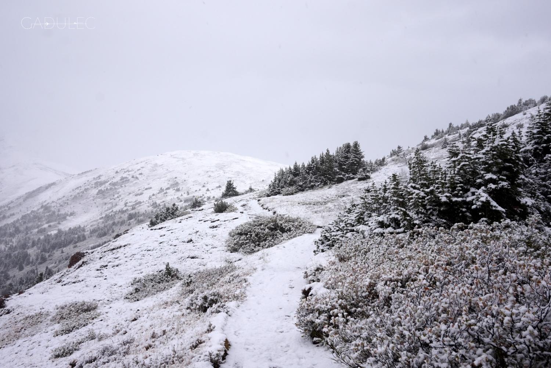 Jak co roku zima zaskoczyła spacerowiczów ;)