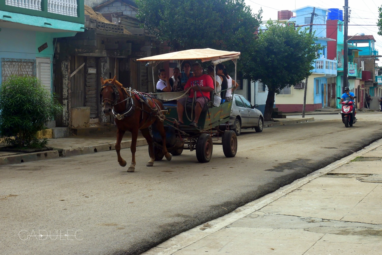 Bryczka, Cienfuegos, Kuba