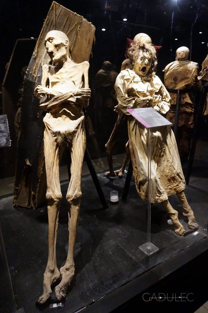 Guanajuato-mumie
