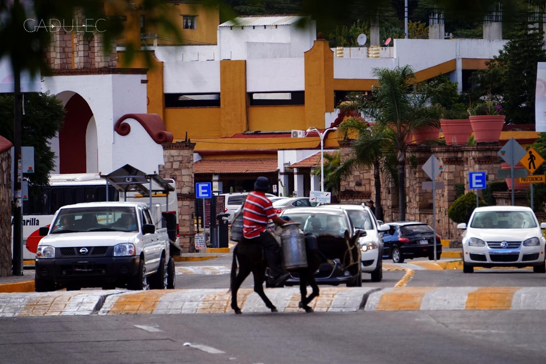 Guanajuato-osiol