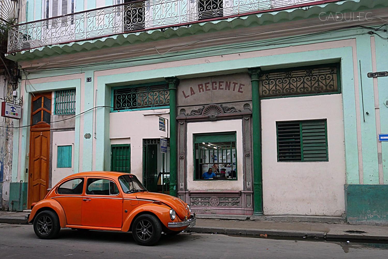 kubanskie-auto