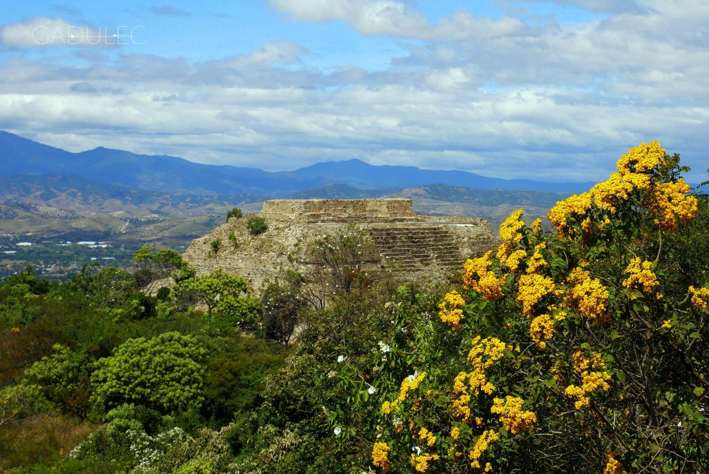 Monte-Alban-ruiny