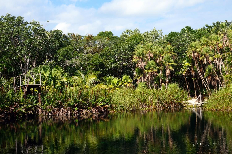 Cenote Crystal