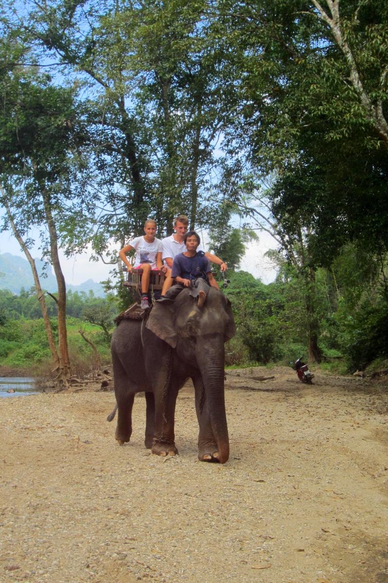 slon-tajlandia
