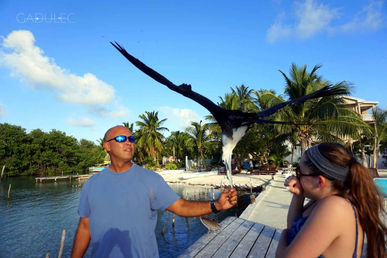Belize-karmienie-ptakow