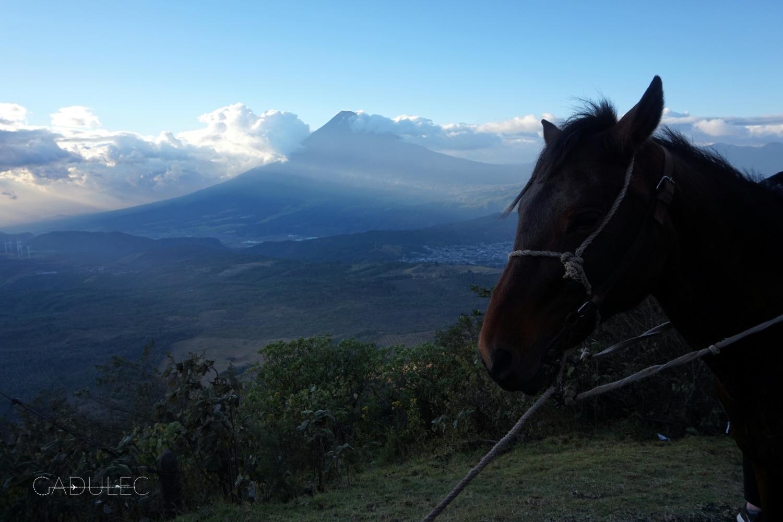 Pacaya-trekking-kon