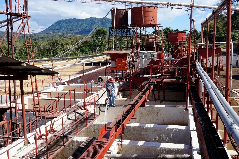 Wizyta w fabryce kawy koło Ataco