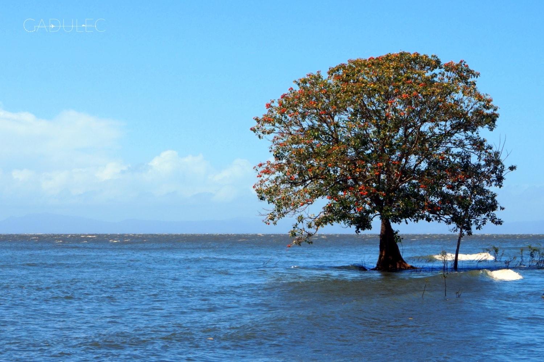 wyspa-ometepe-nikaragua