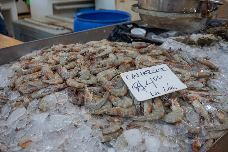 mercado-de-mariscos-panama