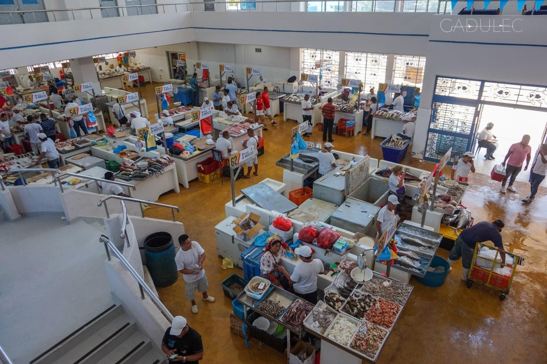 mercado-de-mariscos-panama-2