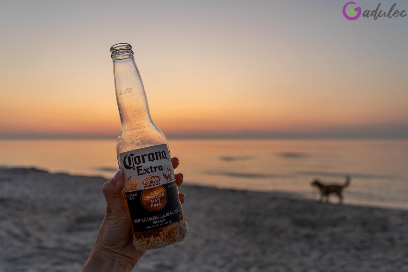 Piwo Corona na plaży w Karwi