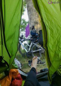 Pole namiotowe w Dziwnowie