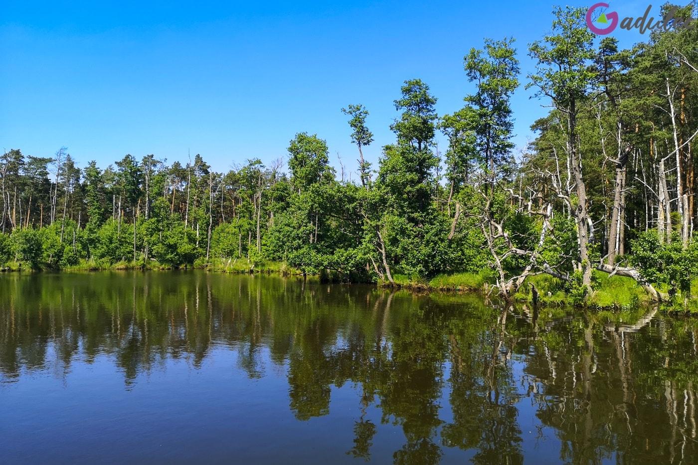 Słowiński Park Narodowy - jezioro