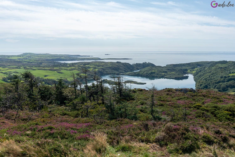 Knockomagh w Irlandii - wycieczka