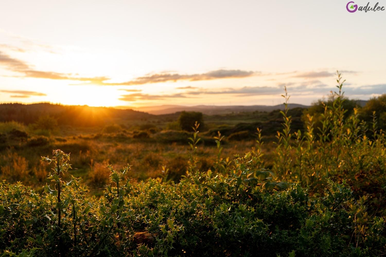 Irlandzki zachód słońca