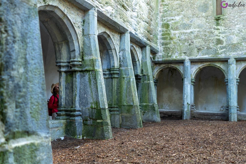 Opactwo Muckross Abbey